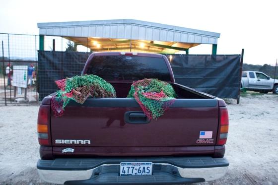 Christmas 2012_10