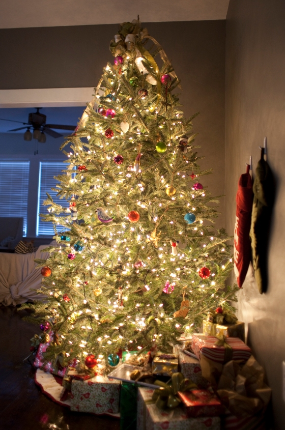 Christmas 2012_23