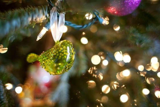 Christmas 2012_28