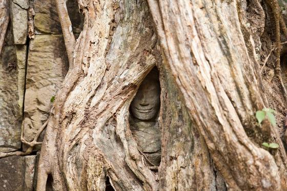 Cambodia_148