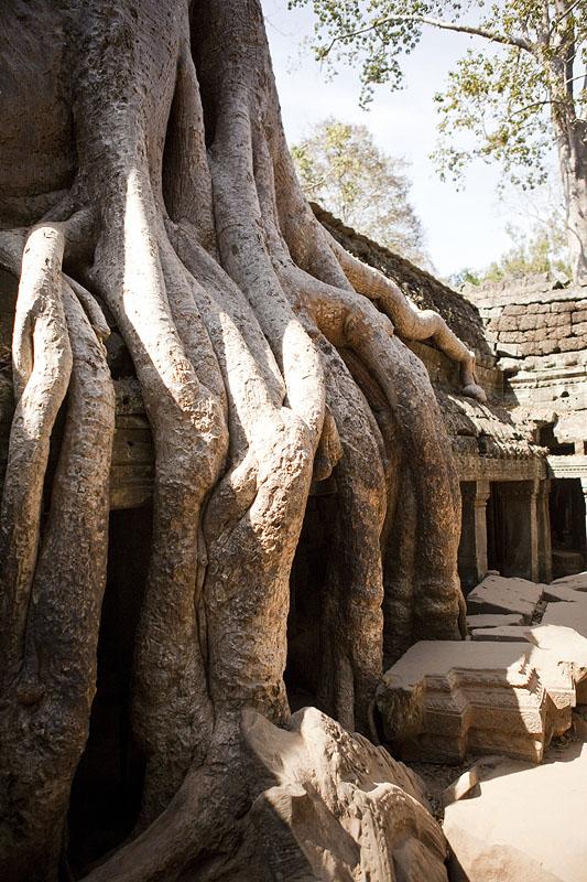 Cambodia_154