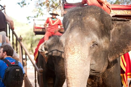 Cambodia_187 copy