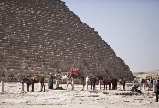 Egypt_59