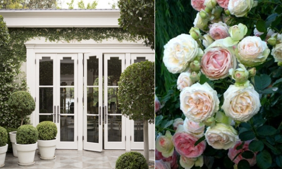 roses and doors copy